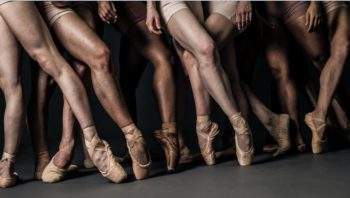 multiple people's legs wearing ballet shoes